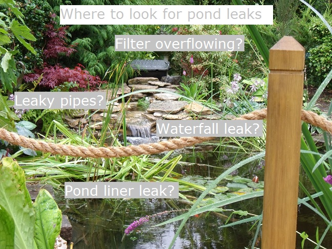 Pond leak detection.