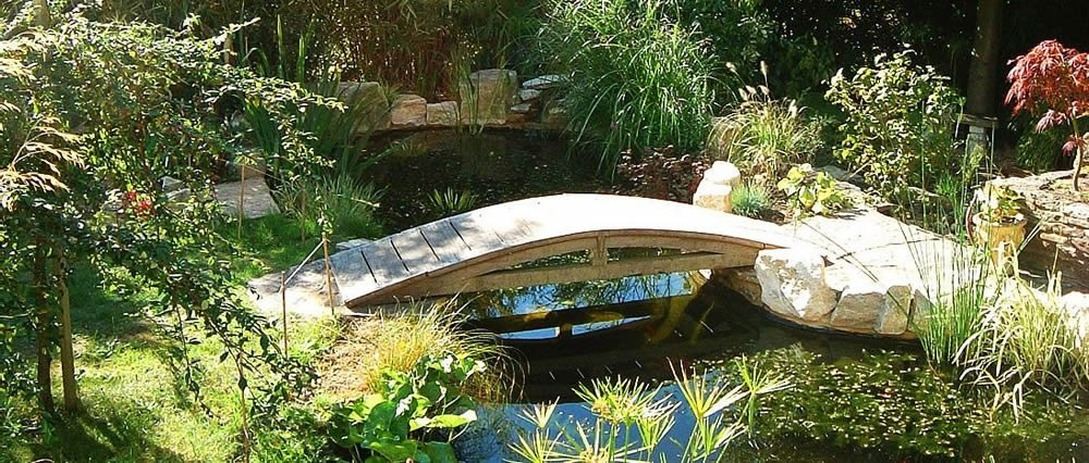 Natural Garden Pond with Bridge
