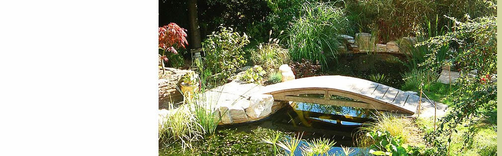water garden construction design company